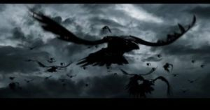 53644-cuervos